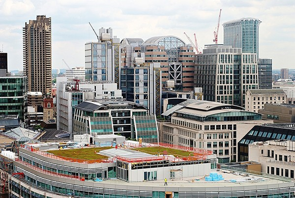 building of green roof with skyscrapers in background