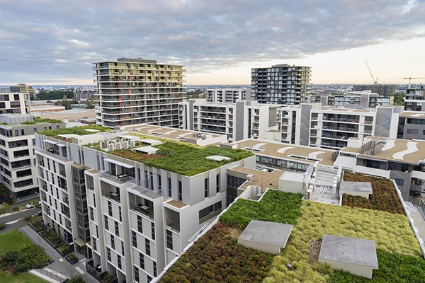 View of green roof on modern buildings
