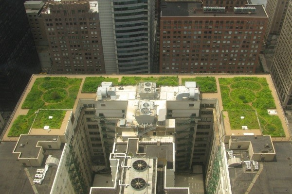 a complex commercial green roof and park